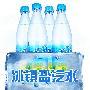 雪菲力   盐汽水 600ml/瓶 24瓶/箱 整箱销售