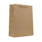 国产  中号 250g  竖式 棉绳黄浆牛皮纸袋 10个/包 中号 250g 竖式 28*37*10   牛皮纸色