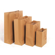 國產  小號 250g 豎式 棉繩黃漿牛皮紙袋10個/包 20*25*8 小號 250g 豎式   牛皮紙色