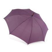 天堂 17118E碰 天堂直桿晴雨傘(顏色隨機) 60cm*8k 隨機色