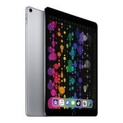 苹果 二代 iPad Pro 10.5 英寸 蜂窝4G 256G 深空灰色  含原装触控笔