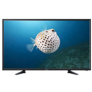 海爾 H50E17 平板電視 50英寸 黑色