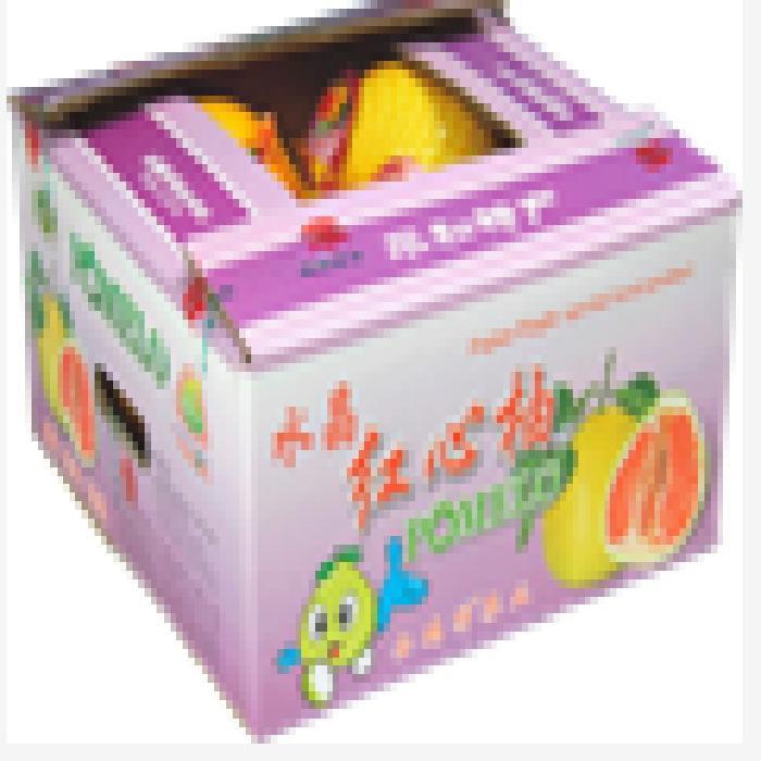 金浣熊食品蜜柚