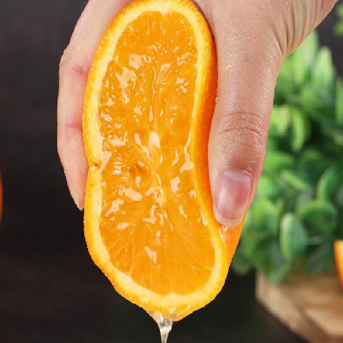 金浣熊食品贛南臍橙7斤