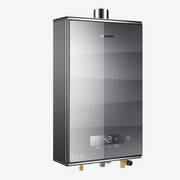 海爾 JSQ26-13CS(12T)金 熱水器 12L