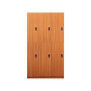 理邦 木纹色防潮板内附层板及挂衣杆带电子锁 6门浴室柜 900*420*2000H 木纹色