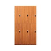 理邦 木纹色MFC板内附层板及挂衣杆带电子锁 6门浴室柜 900*420*2000H 木纹色