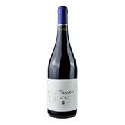 大玛雅  缤纷设拉子红葡萄酒 750ml