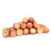 大沙河 20008 大沙河蘋果 10kg