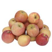 大沙河 20009 大沙河蘋果 5kg
