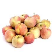 大沙河 20012 大沙河蘋果 5kg